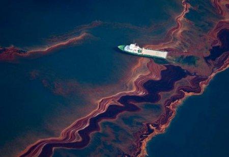 Бактерия-убийца «Синтия» может убить всё живое в Америке и Европе