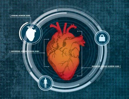 Вместо пальца — сердце: какой метод биометрической идентификации ждёт нас в будущем?